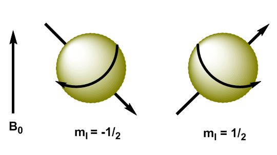 Resonancia magnética nuclear (RMN)