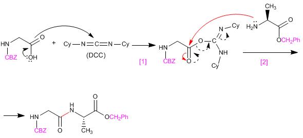 Síntesis Del Dipéptido Glicina Alanina