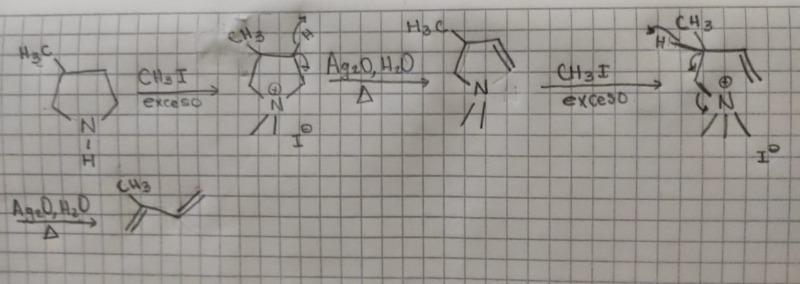 QuimicaOrganica.jpeg
